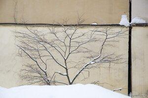 Подражание Д.Конрадту (дерево, стена)