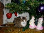 В ожидании Деда Мороза.