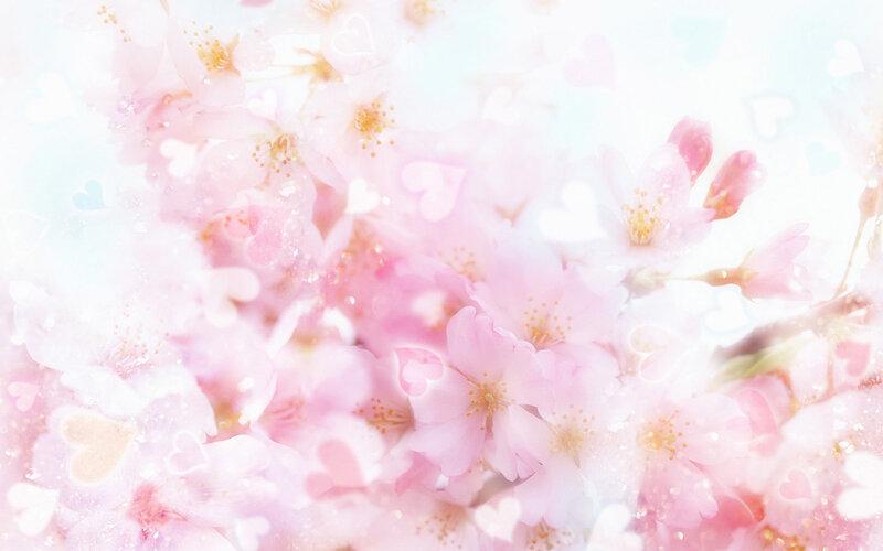 【制作网页素材篇】唯美的花朵背景素材2 - 浪漫人生 - .