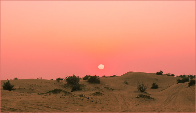 По пустыне