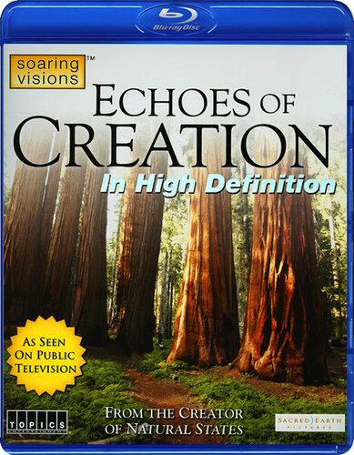 Отзвуки Творения
