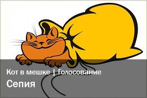 Кот в мешке | Голосование