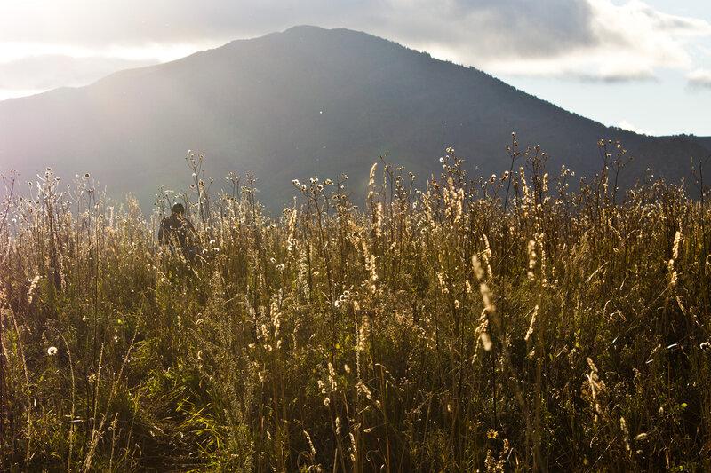 освещенная вечерним солнцем гора