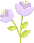 flower_3_maryfran.png