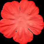 aheimann-rconnect-flower8.png
