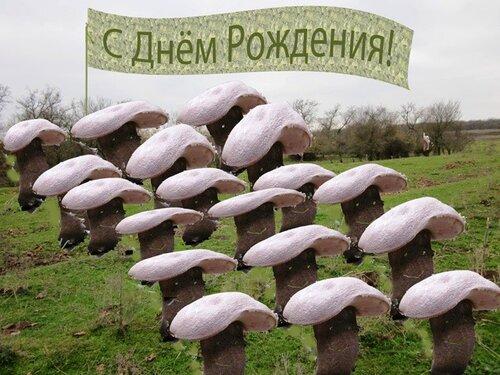 поздравление с днем рождения заядлому грибнику девушка