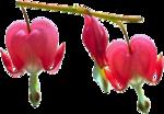 «Almost spring» 0_51177_4c5247e3_S