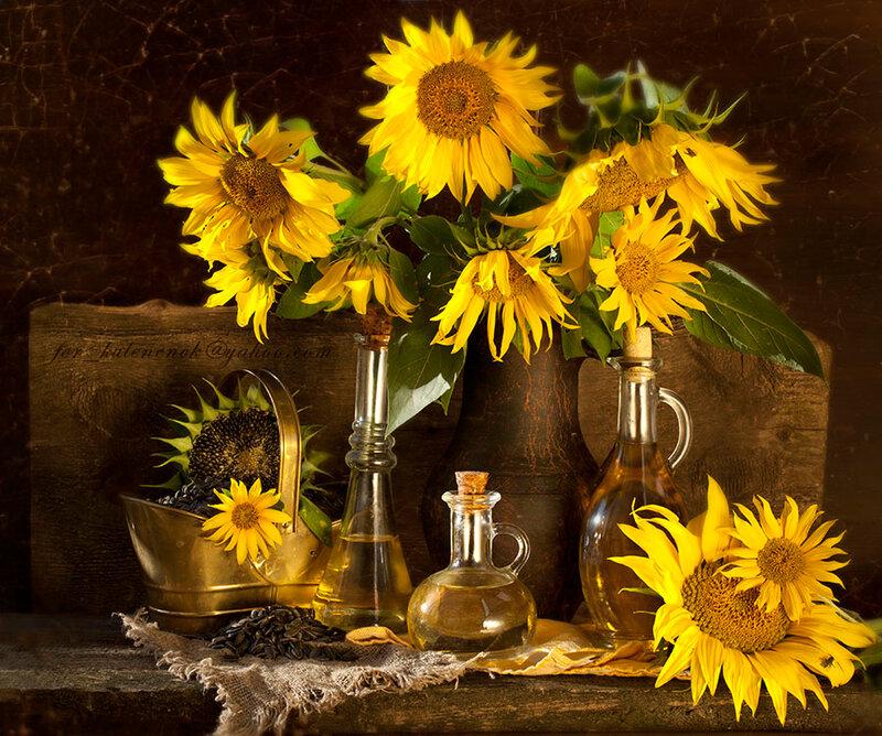 sunflower and vegetable oil, still life