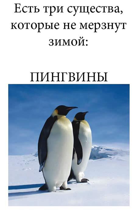 http://img-fotki.yandex.ru/get/5005/130422193.d9/0_74f8b_fffadb80_orig