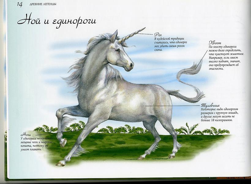 http://img-fotki.yandex.ru/get/5005/25931634.2f/0_5f4ee_f7f55eb7_orig