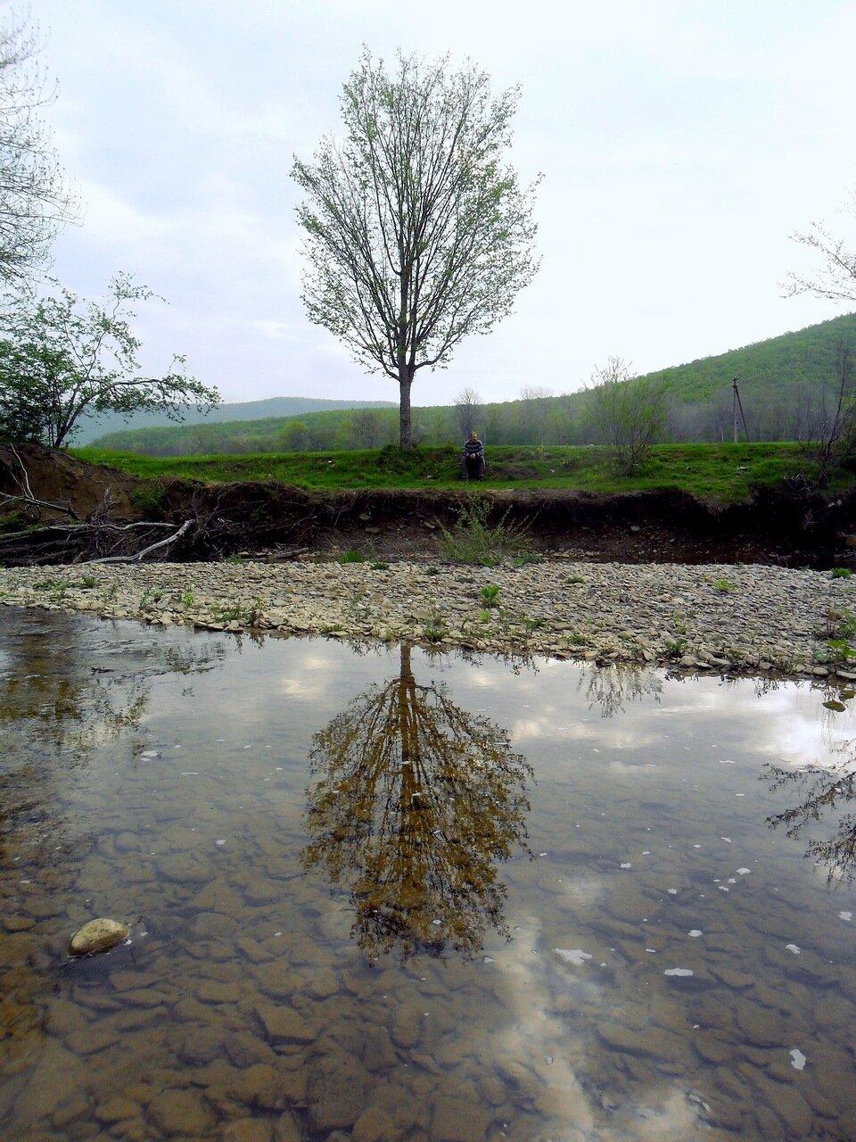 На речных берегах
