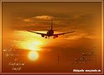 mds6740 Take Off IMG_2780.jpg
