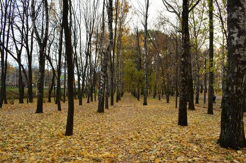 парк осыпались