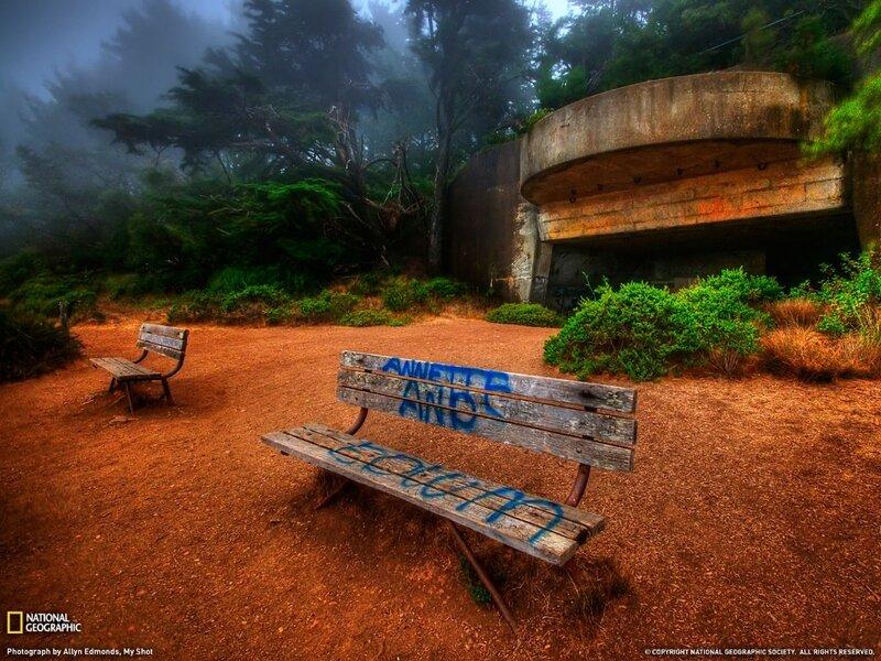 Фотографии общества National Geographic 9