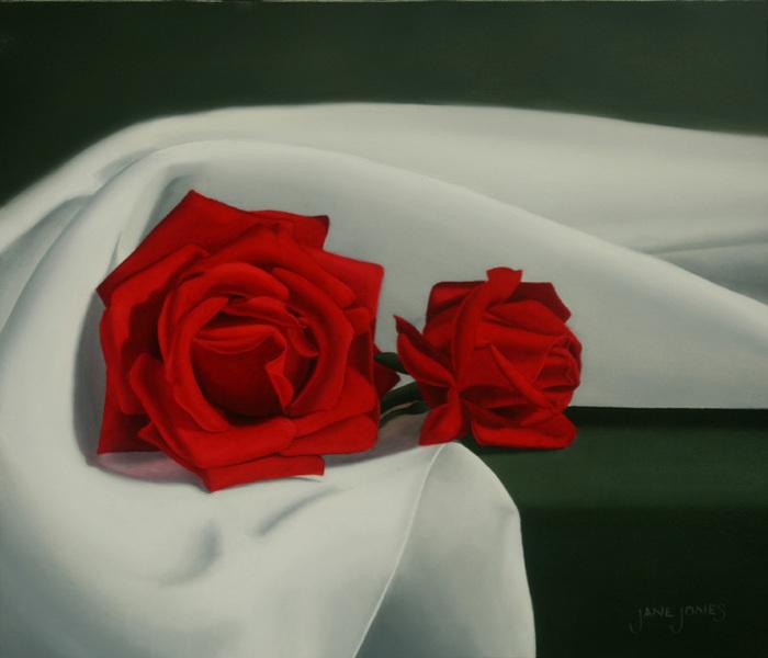 На темном фоне красные розы в белом