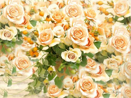Прекрасны розы! открытка поздравление рисунок фото картинка