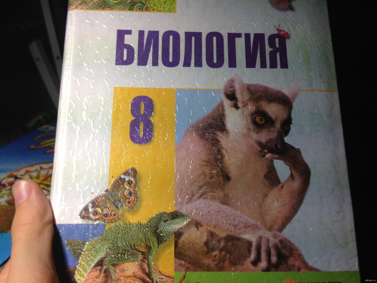 Биология, 8-й класс. Лемур