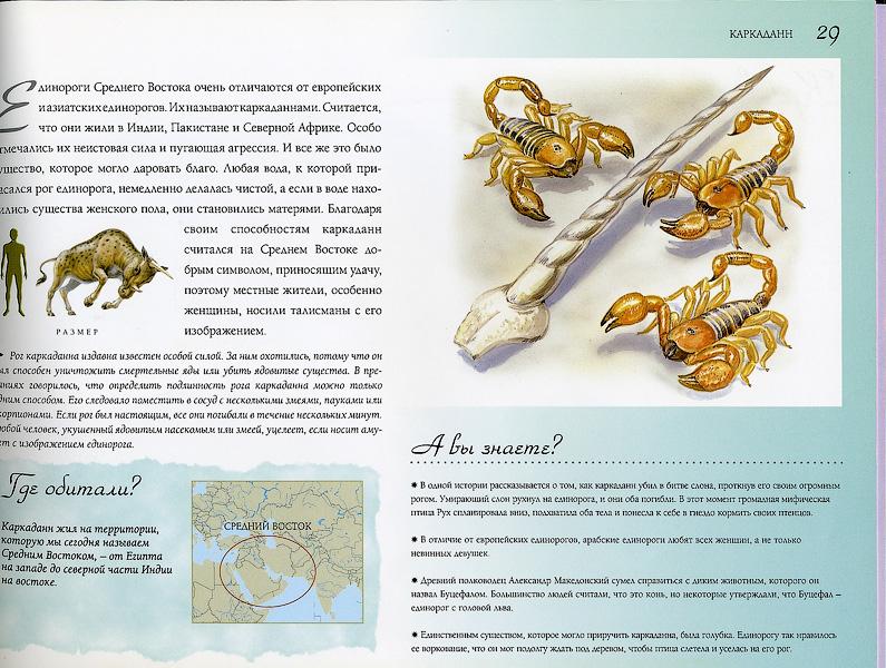 http://img-fotki.yandex.ru/get/5006/25931634.2f/0_5f4f1_fe5007e6_orig