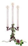 tp-candles5.png