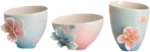 SD DM CUPS.png
