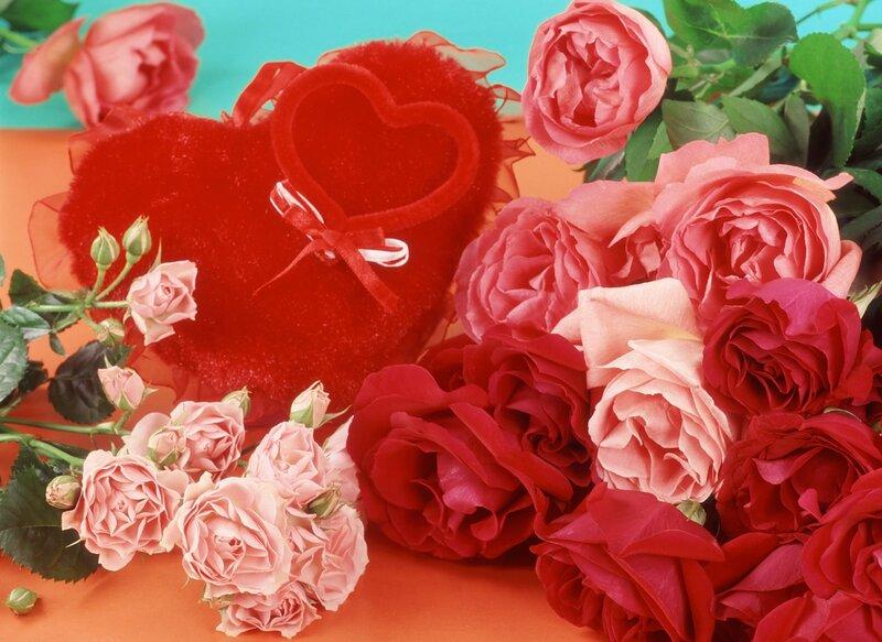 Букеты с днем святого валентина картинки приколы, цветы подсолнухов спб