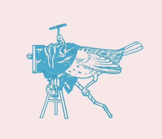 Логотип знакомому фотографу