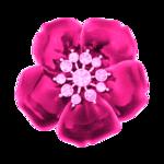 «DBV_PimpMySwag» 0_58d93_afa63d72_S