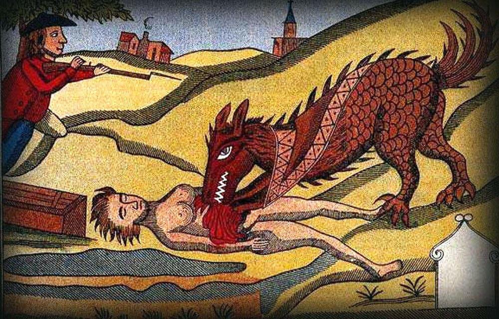 Beast of Gévaudan,, 1764-67 2.jpg