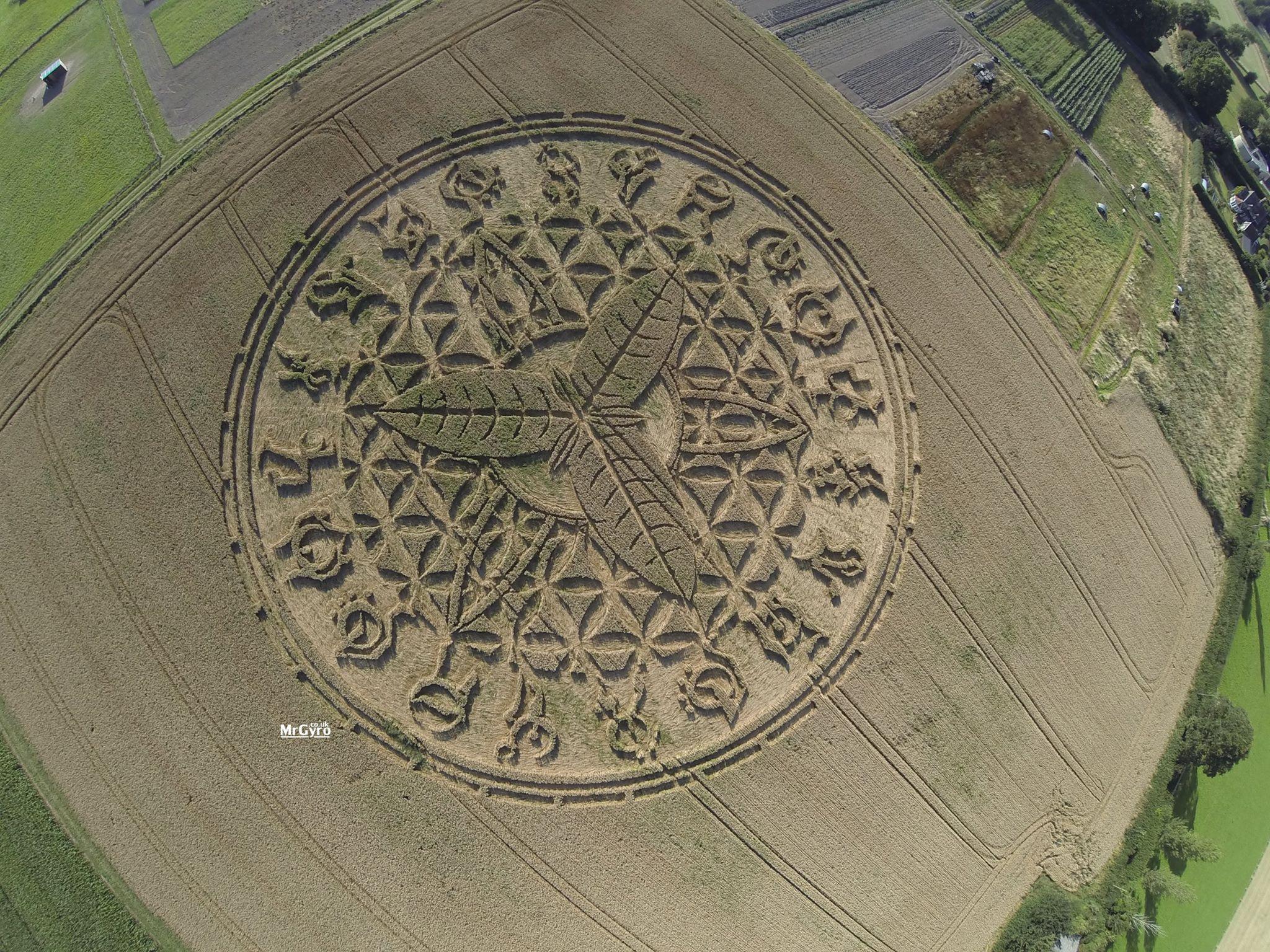 Круг на поле со звёздным посланием недалеко от Солсбери, графство Уилтшир, Великобритания Август 2016