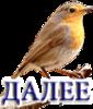 Надпись ДАЛЕЕ 0_23bd54_17d93241_XS
