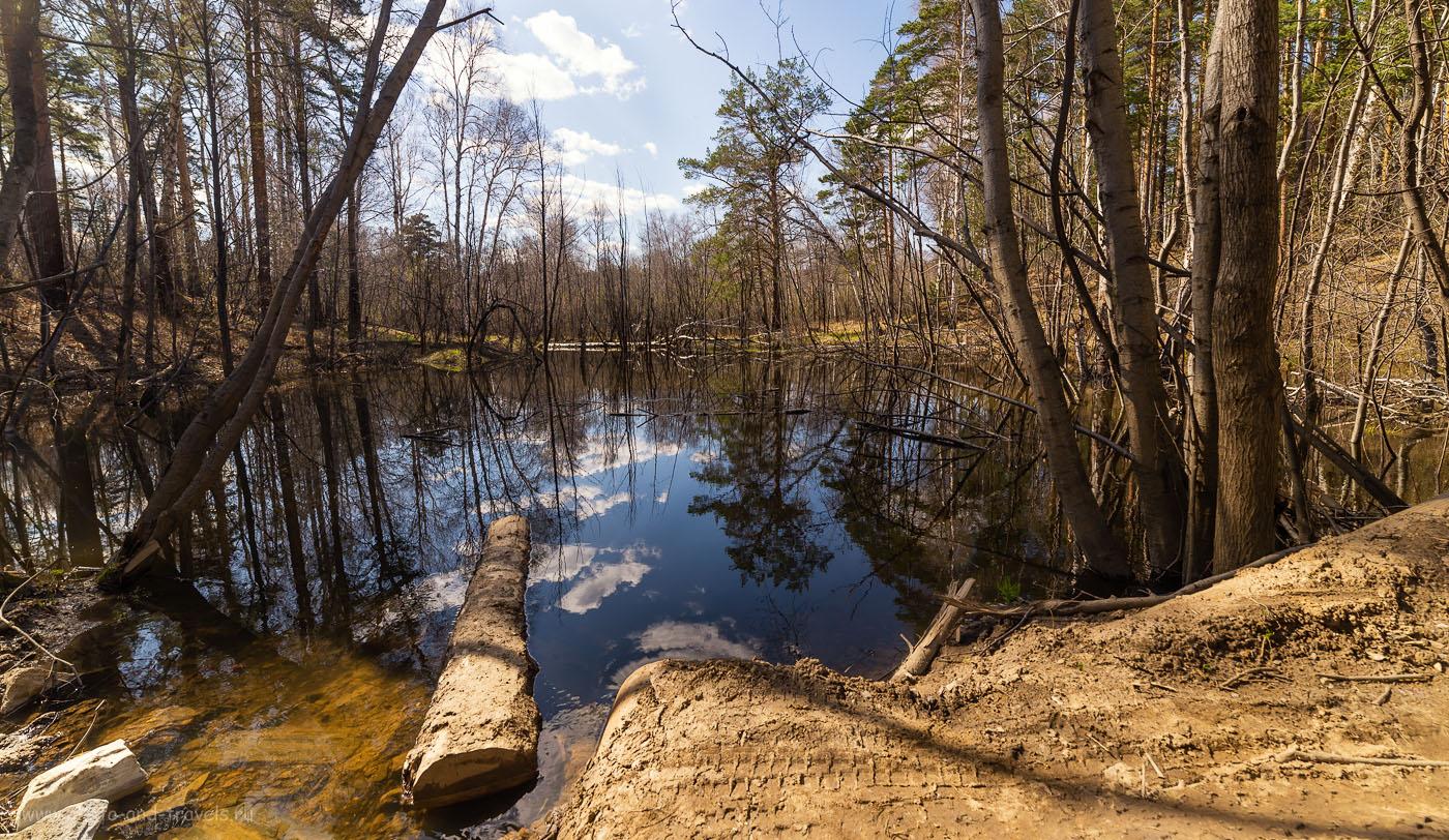 Фотография 13. По дороге к берегу озера Аракуль лесной ручей размыл проезд. Зато как здесь красиво! 1/160, -1.67, 8.0, 100, 14.