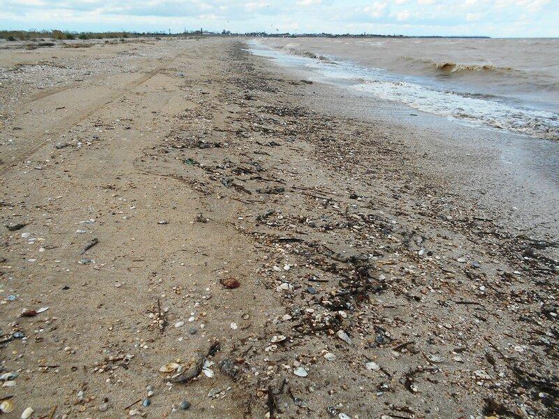 Гуляли волны по песку, и след их проявился... DSCN5234.JPG