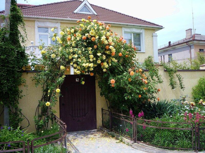Розы над входом во двор