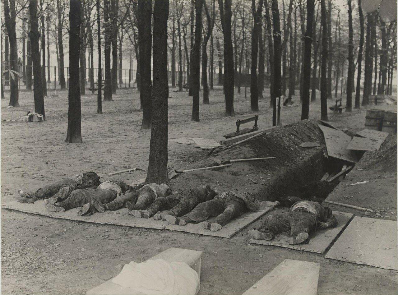 25-27 августа. Эксгумация  тел шести человек, расстрелянных 20 августа  в Люксембургском саду