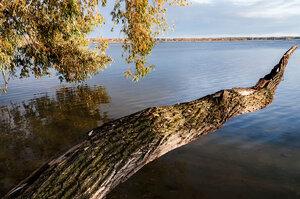озеро Большой Куяш
