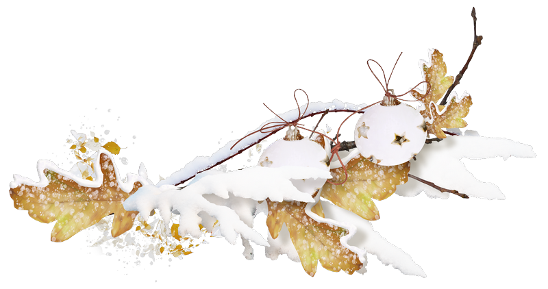 sekada_snoweverywhere_cluster(5).png