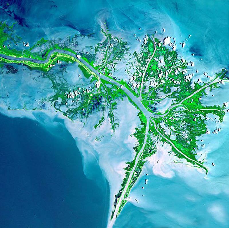 5. Дельты могут похвастаться большим разнообразием экосистем, включая ценные болотистые местности. Н