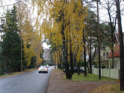 Осенний хмурый день