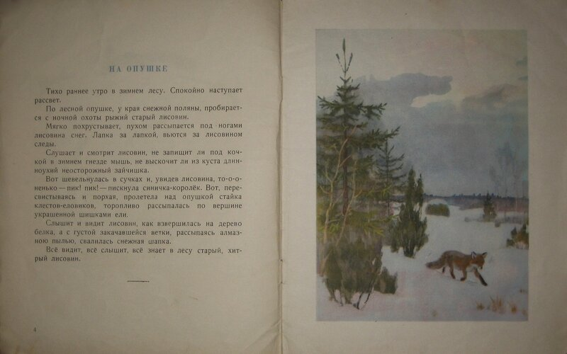 Голая в лесу рассказ