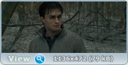 Гарри Поттер и Дары смерти: Часть 1 / Harry Potter and the Deathly Hallows: Part 1 (2010) BDRip 1080p + DVD9 + BDRip-AVC