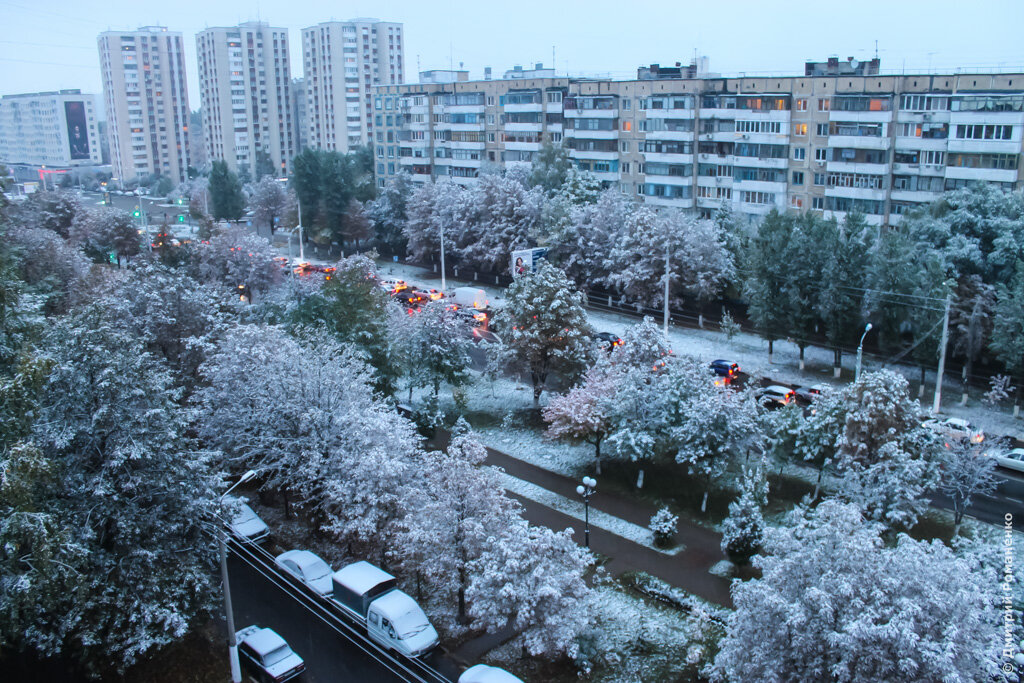 снег, Белгород, осень
