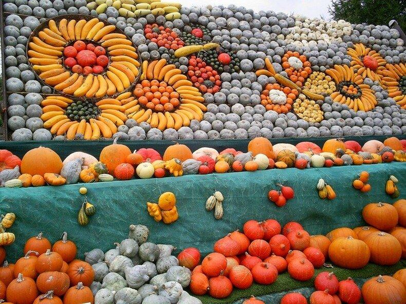 фестиваль тыквы