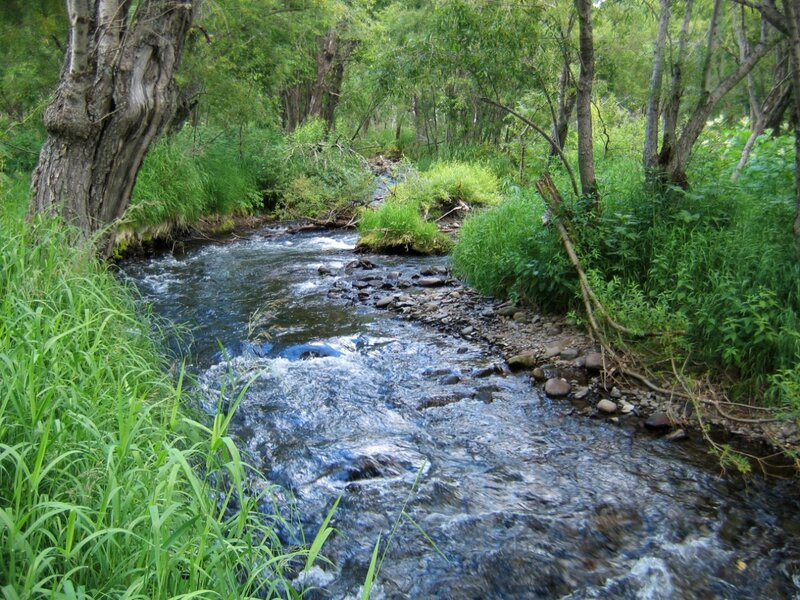 Река Порожистая