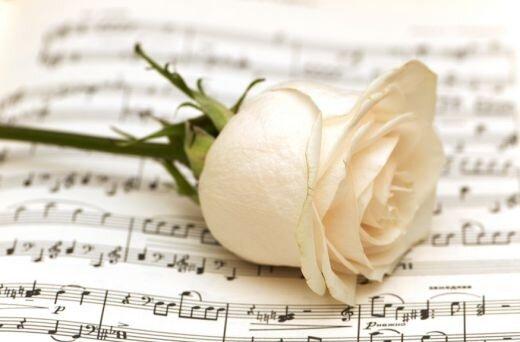 Чаще всего именно белые розы дарят в честь искренней любви, такой же