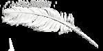 «Charcoal par PubliKado.PU-CU.GR» 0_60aab_73f4a1ec_S