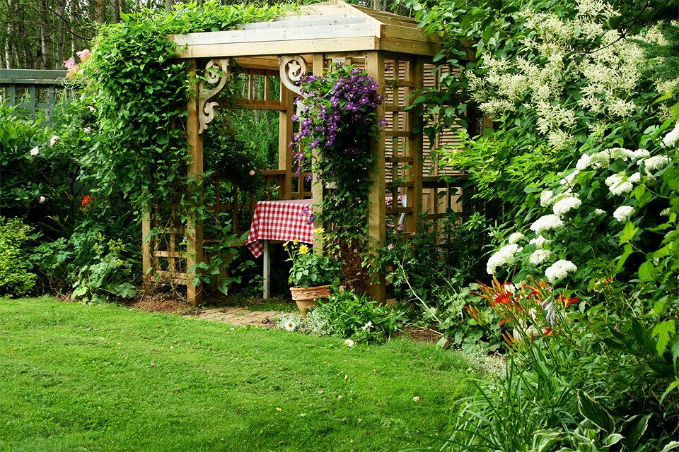 красивые дачи и сады фото