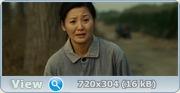 Землетрясение / Tangshan da dizhen (2010) BDRip + HDRip