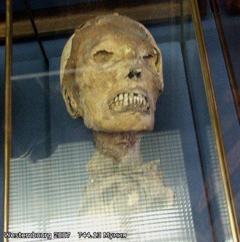 744.13 Голова мумии.