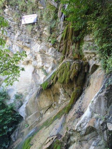 Замшелые скалы