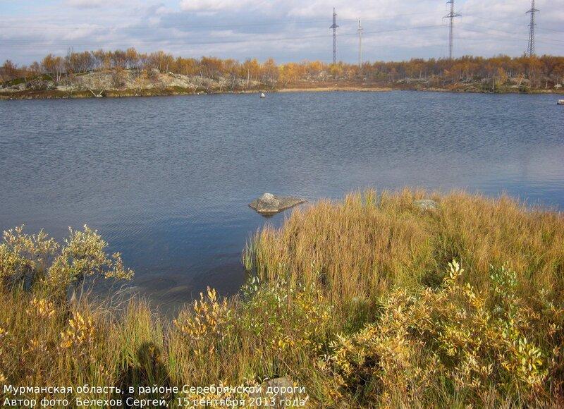 север, природа, осень, лес